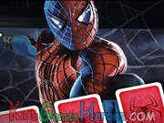 Spider man 3 Memory Match