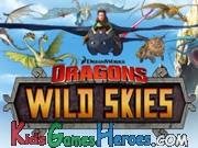 Play Dragons Riders Of Berk - Wildskies
