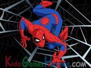 Spiderman - Ode to a Super Hero Icon